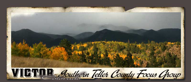 Southern Teller County Focus Group